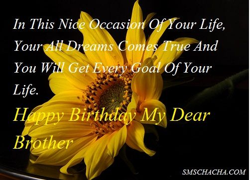 Happy Birthday Brother In This Nice Occasion Of Your Life