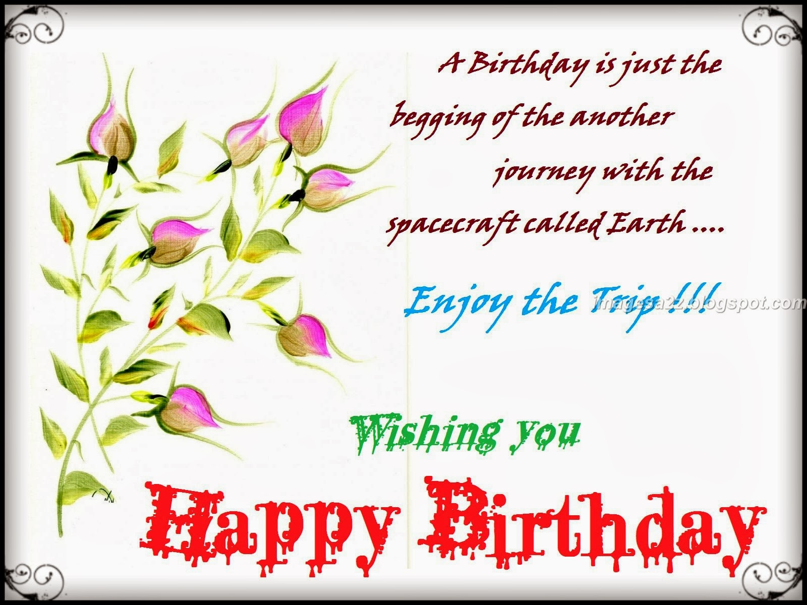Wishing You Happy Birthday Enjoy The Trip