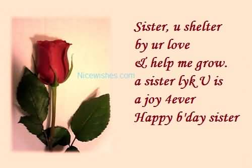 Beautiful Rose Birthday Wishes For Sweet Sister E-Card