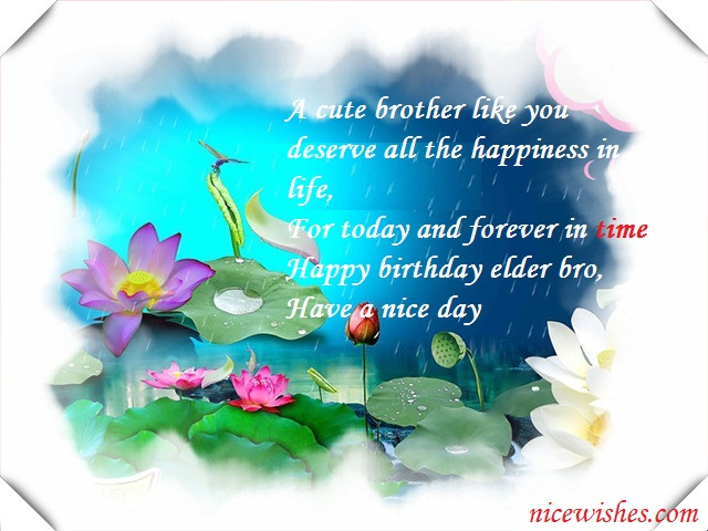 Fabulous Birthday Wishes For Dear Elder Brother Greetings