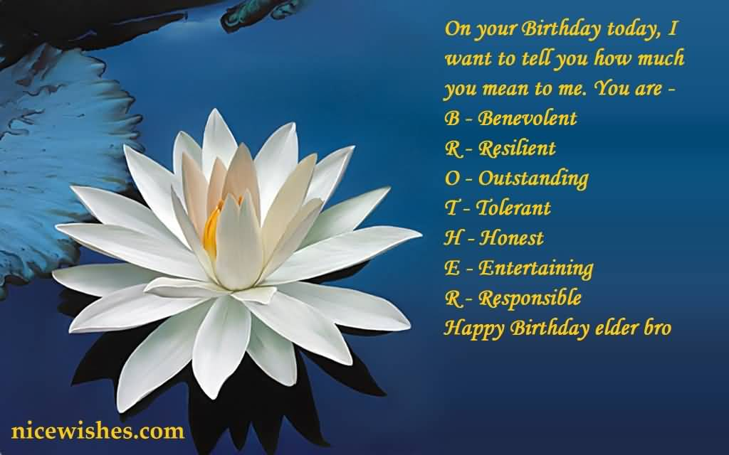 White water lilly e card birthday wishes for elder brother nicewishes white water lilly e card birthday wishes for elder brother m4hsunfo