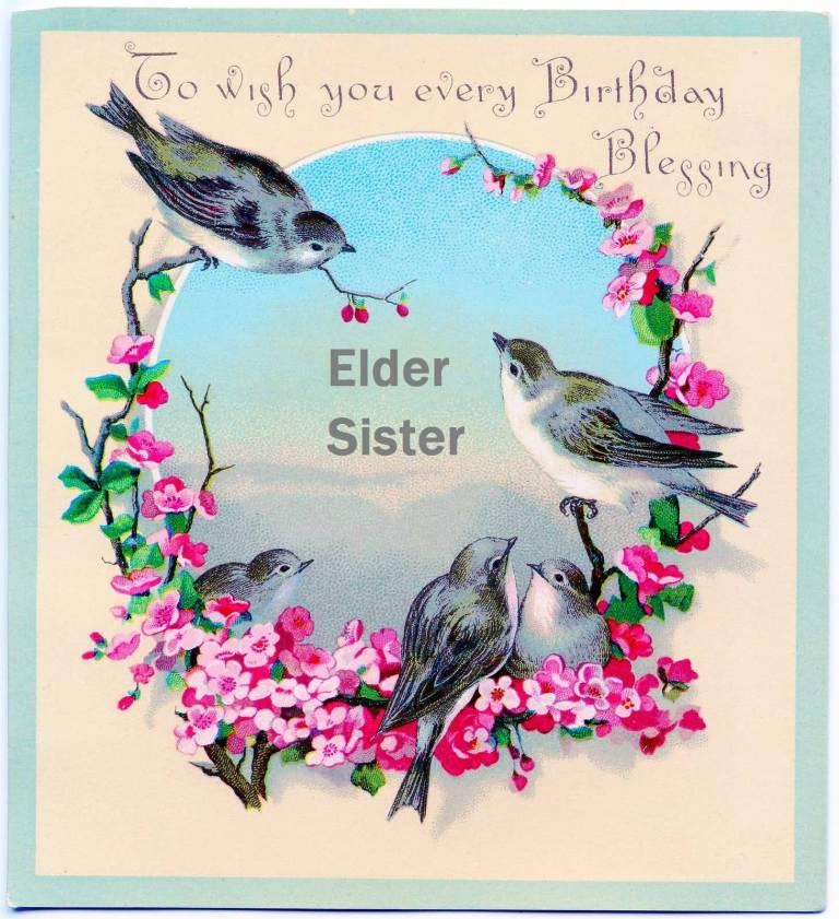 Lovely Bird Birthday For Elder Sister Greetings