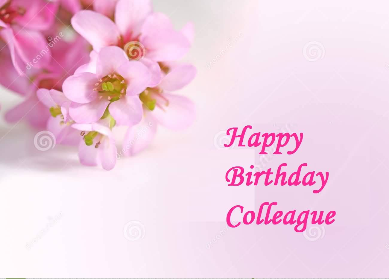 Comments off on nice flower birthday wishes for colleague greetings