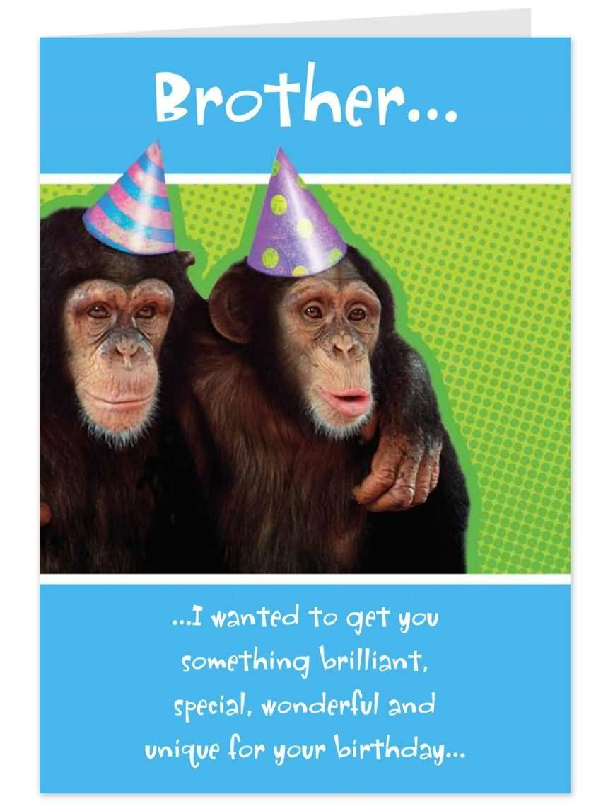 Mind blowing funny e card birthday wishes for brother nicewishes mind blowing funny e card birthday wishes for brother voltagebd Choice Image