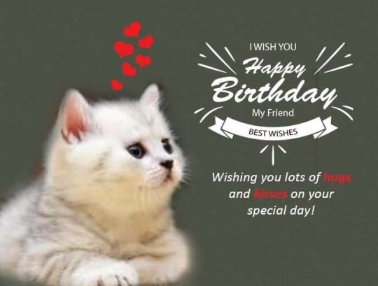 Birthday Wishes For A Friend On Facebook Cute Birthday Gift – Birthday Greetings Facebook