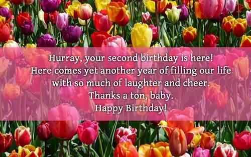 Amazing Birthday Quotes For Grandson