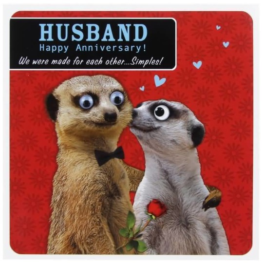 Awesome Funny Anniversary Wishes For Husband E Card