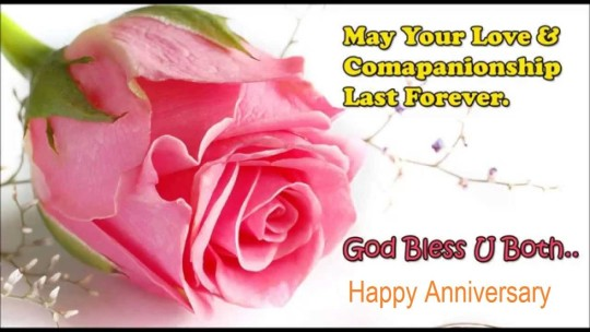 Beautiful greetings anniversary wishes for sweet couple nicewishes