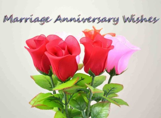 Latest E-Card Anniversary Wishes For Friends