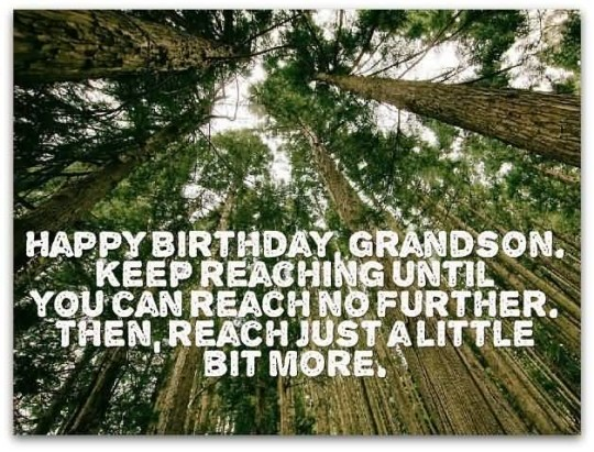 Lovely Birthday Quotes For Grandson