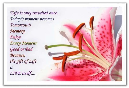 Lovely E-Card Anniversary Wishes For Friends