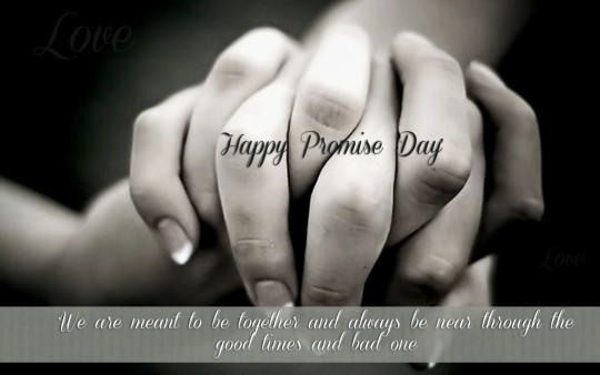 Lovely Happy Promise Day Nice Picture