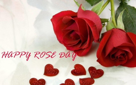 Lovely Happy Rose Day Image