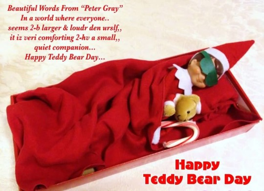 Lovely Happy Teddy Bear Day Beautiful Image