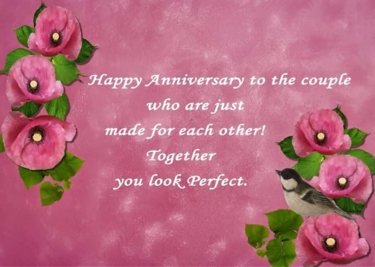 Nice Greetings Anniversary Wishes For Perfect Couple