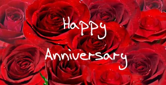 Nice Greetings Anniversary Wishes For  Wife