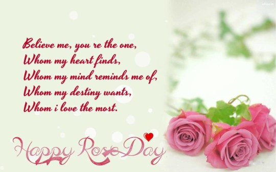 Nice Happy Rose Day Wallpaper