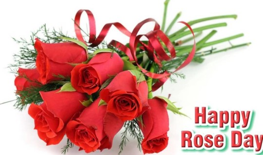 Wonderful Happy Rose Day Image