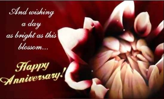 Awesome Anniversary Wishes For Sister Image