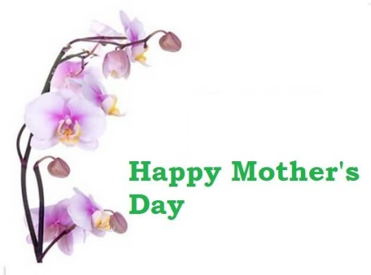 Fabulous E-Card Happy Mother's Day