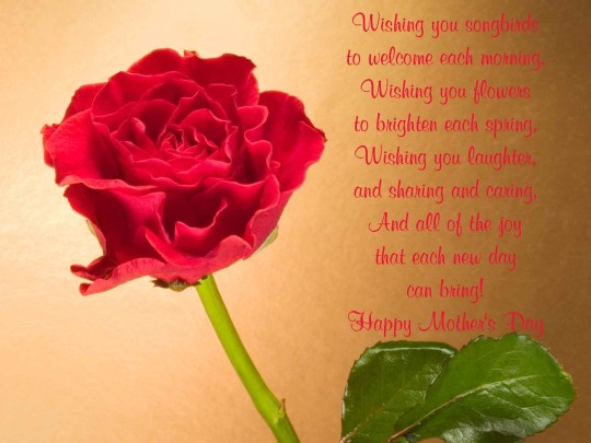 Great Wishes Happy Mother's Day Greetings