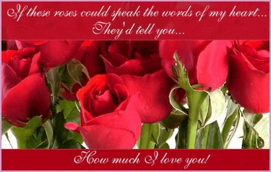 Latest Message Love Wishes For Girlfriend Greetings