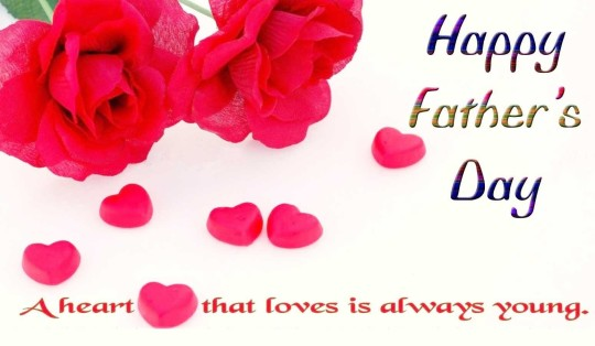 Lovely Happy Father's Day Greetings