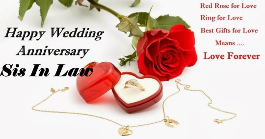 Lovely red rose anniversary wishes for sister in law image