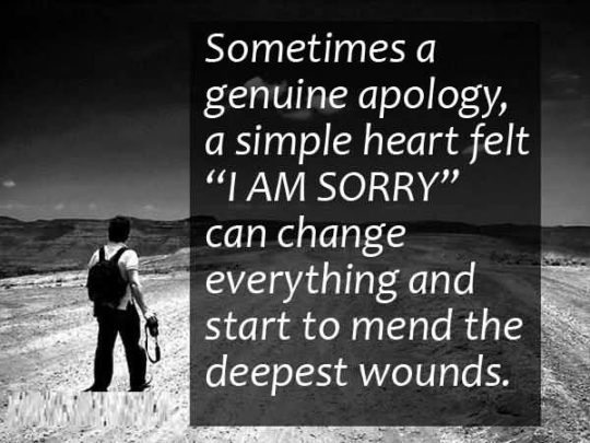 Sorry Quotes, Messages & ECards