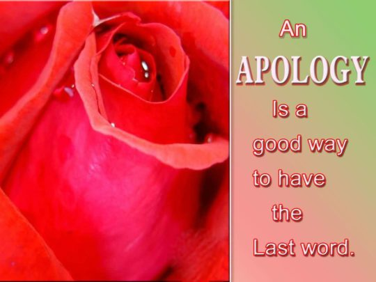 Latest Apology Quotes The Last Word