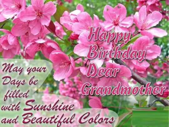 Special Birthday Wishes For Grandmother Greetings