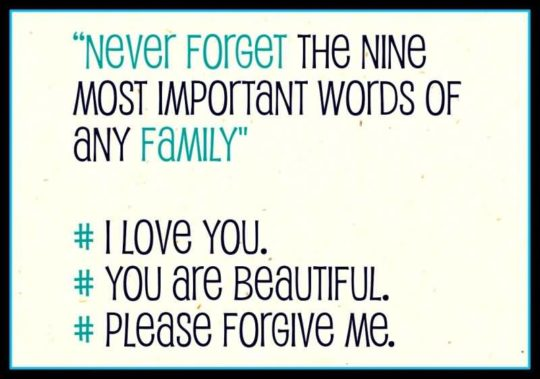 Sweet Apology Quotes Important Words Of Any Family
