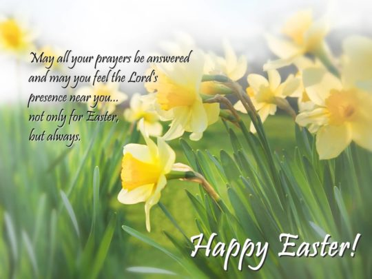Beautiful Happy  Easter Card With Flowers  For Wishings