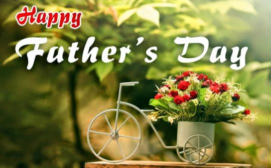 Nice Cycle With Red Roses On fathers Day Wishes