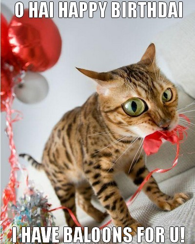 Attractive Funny Birthday Wishes Cat I HAve Baloone For U