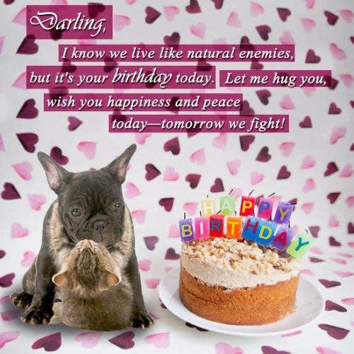 Darling I Know We Live Like Natural Enemies But It's You Birthday Today Let Me Hug You Wish You Happines And Peace