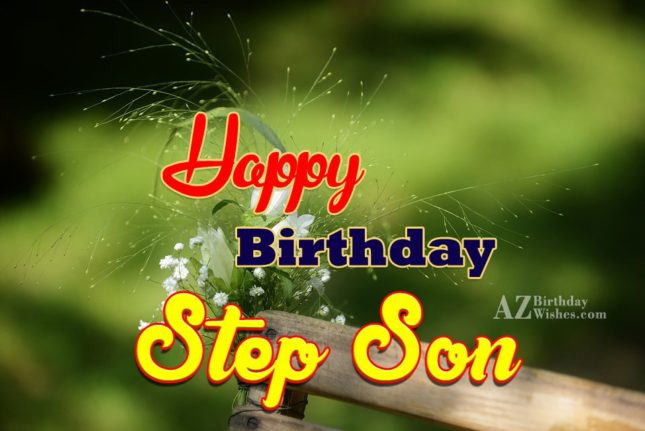 Happy Birthday Step Son (3)