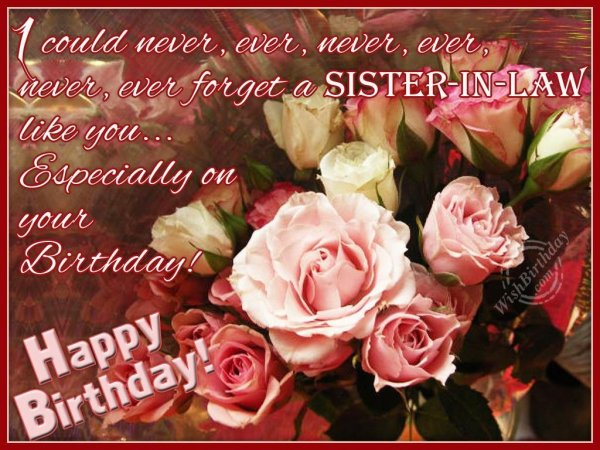 I Could Never Ever Never Ever Never Ever Forget A Sister In Law Like You Happy Birthday