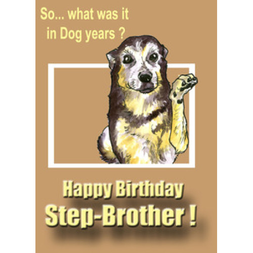 So What Was It In Dog Years Happy Birthday Step Brother