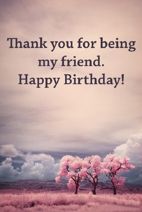 Thank You For Being My Friend Happy Birthday