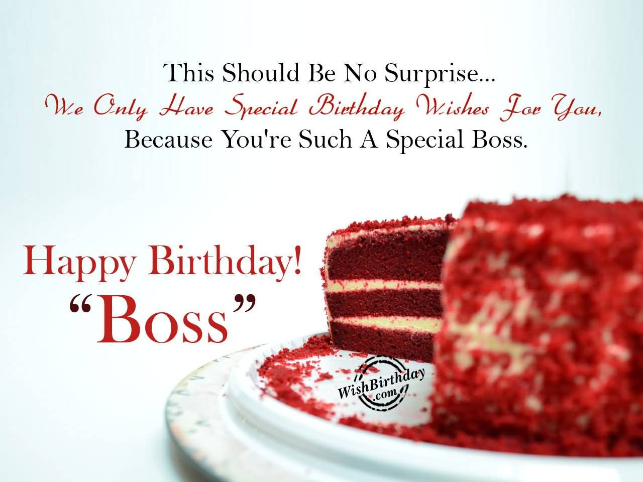 This Should Be No Surprise We Only Have Special Birthday You're Such A Special Boss Happy Birthday Boss
