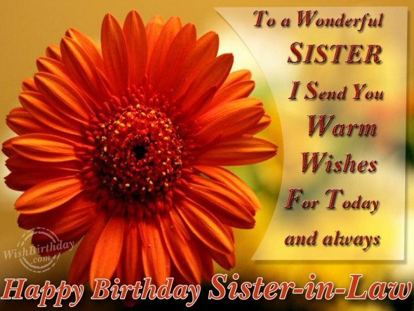 To A Wonderful Sister I Send You Warm Wish For Today And Always Happy Birthday Sister In Law
