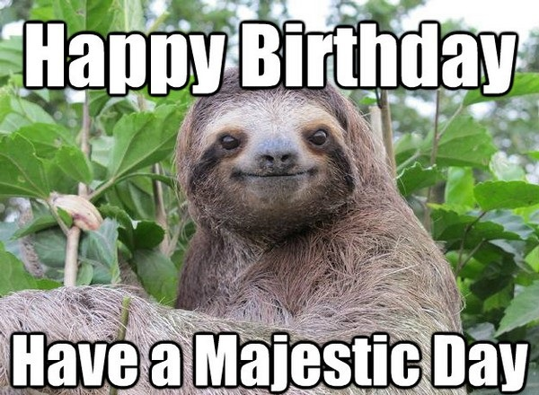 Very Funny Happy Birthday Have A Majestic Day