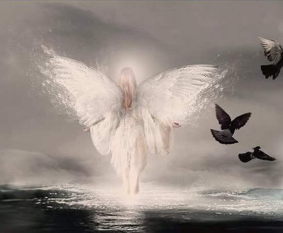 Awesome Angel In Water With Birds Graphics