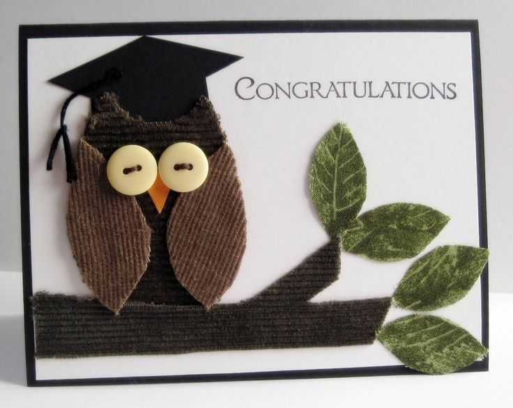Congratulations On Your Graduation Owl Picture Greeting Card Wishes