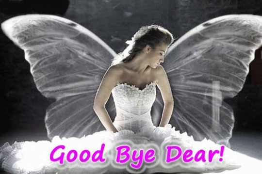 Fairy Wishes Good Bye Dear