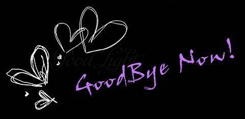 Good Bye Now Image