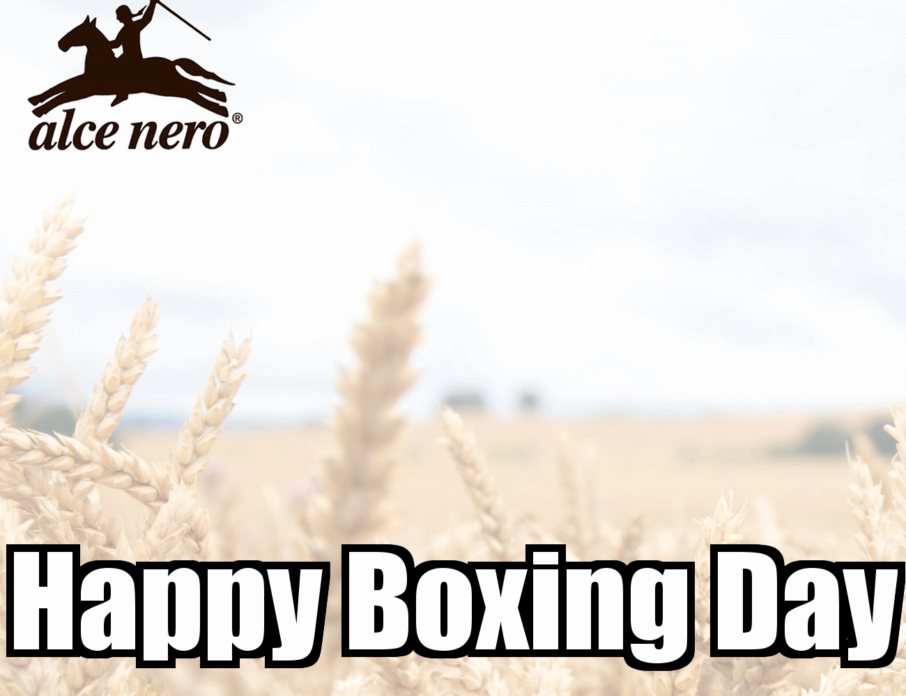 Happy Boxing Day Greetings Image