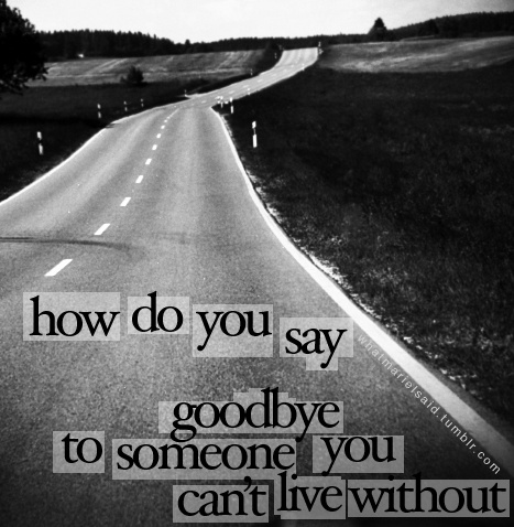 How Do You Say Goodbye To Someone You Cant Live Without Quotes Image