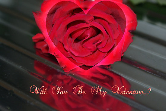 Will You Be My Valentine Flower Image